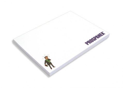 Hafti 100x75mm, FSC-Papier 4-farbig bedruckt